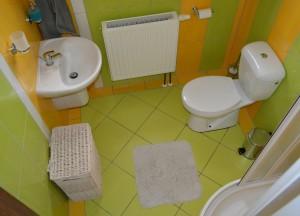 Přízemí bezbariérový pokoj - sprcha, WC